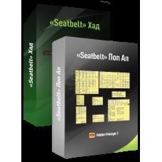 «SEATBELT» Комплект